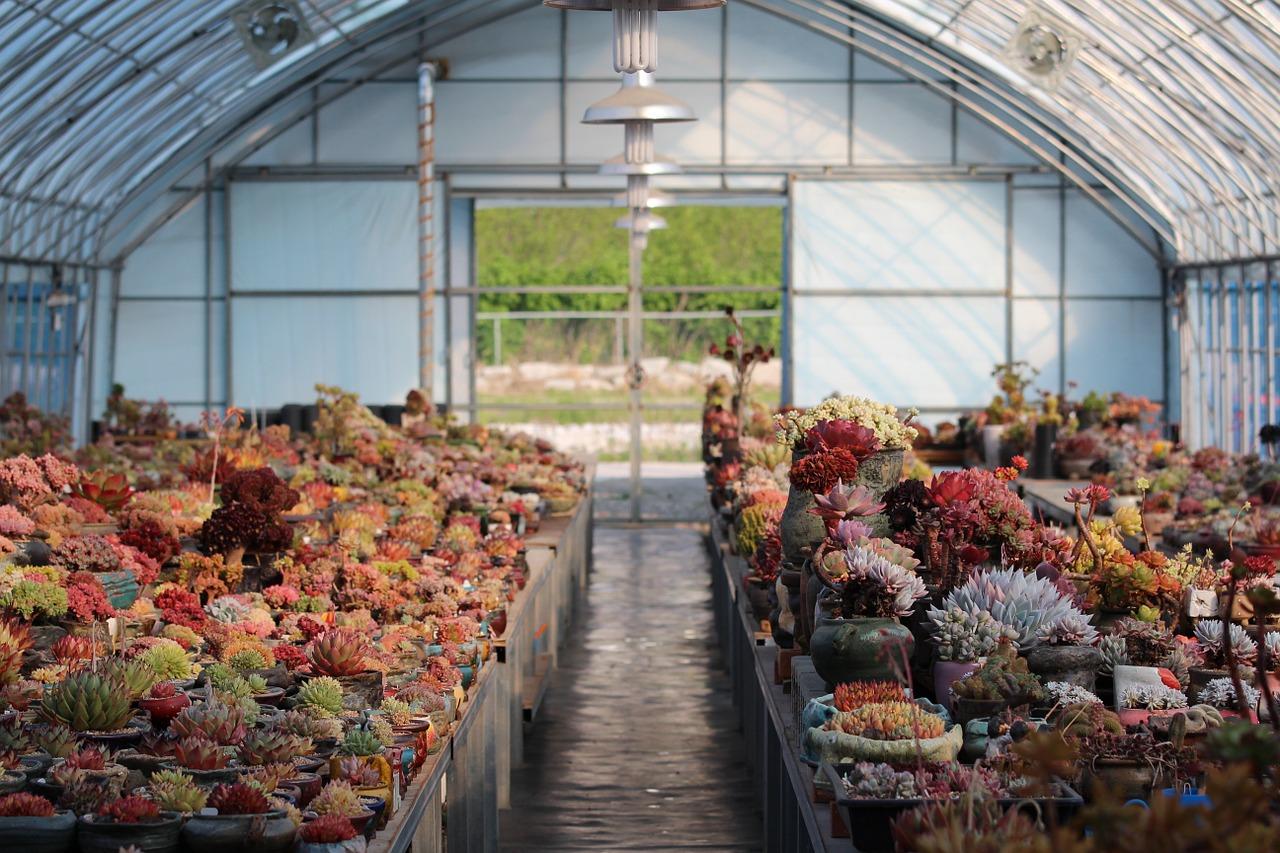 Lampy do hodowli roślin